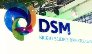 DSM raakt