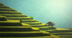 beleggen in China