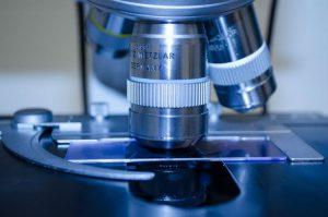 de SPDR S&P Biotech ETF