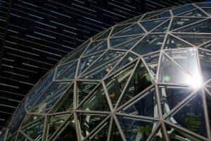 Groeihobbel voor Amazon