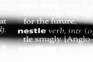Nestlé ligt goed