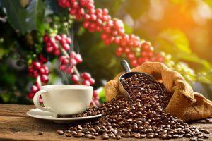 Inspelen op een hogere koffieprijs