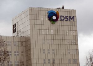 strategie DSM betaalt