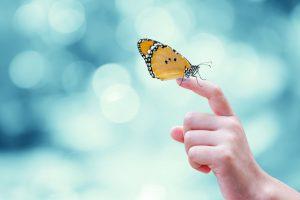Optietip 151: Weer een AEX butterfly, nu voor januari