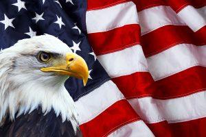 Populair deze week: het koopje uit de VS