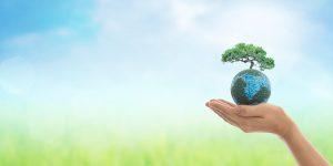 Een thema dat mij steeds meer begint te interesseren is duurzaamheid. In vaktermen heet dit ESG en dat staat voor Environmental, Social & Governance.